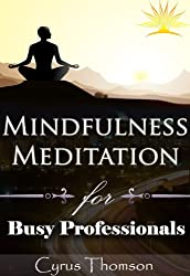 Mindfulness Meditation for Busy Professionals: Unconventional Mindfulness Exercises to Cure Stress and Sustain Peace (Developed Life Health and Wellness, ... Mindfulness for Beginners, Cure Stress)