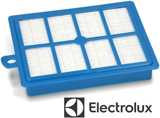 Electrolux Filtro Hepa aspirador Bolido Clairo Ergospace Excellio 9001677682: Amazon.es: Hogar