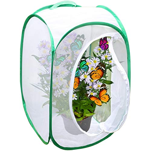 Backyard Butterfly Cage Habitat --- 24
