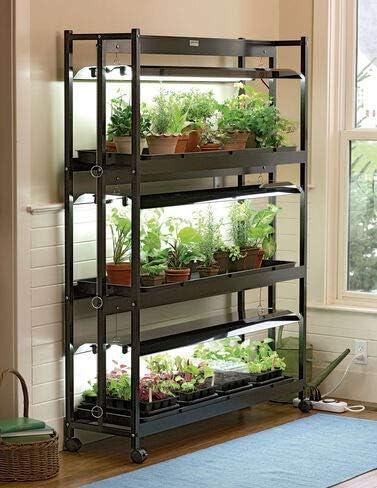 Indoor Grow Light 3 Tier Stand Sunlite Light Garden With Plant Trays Amazon Ca Patio Lawn Garden