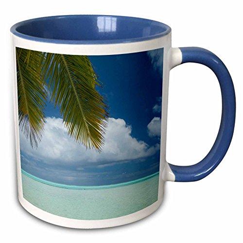 3dRose Danita Delimont - oceans - Cook Islands, Aitutaki, One Foot Island, a small motu or islet - 15oz Two-Tone Blue Mug (mug_228574_11)