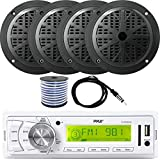 Best Pyle Pool Alarms - Pyle AM/FM in-Dash Marine MP3 Player USB AUX Review
