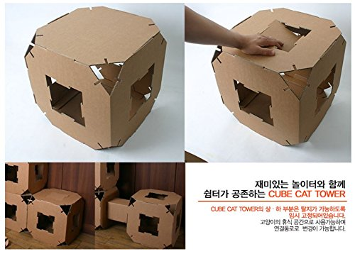Amazon.com : Cube Cat Tower Toy House Pet Cardboard Tunnel Block 5Piece :  Pet Supplies