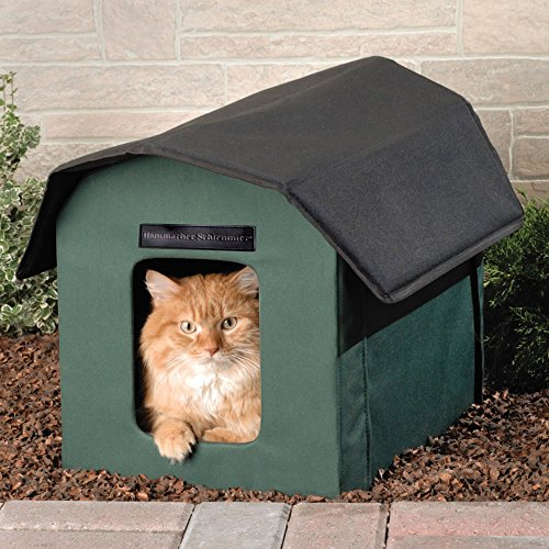 The Only Outdoor Heated Cat Shelter ()