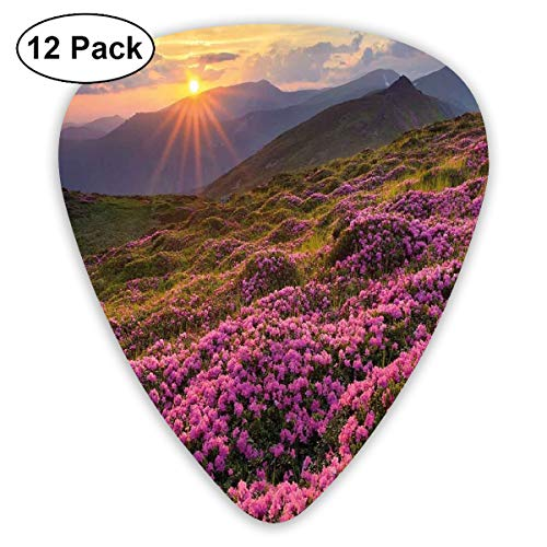 (Guitar Picks - Abstract Art Colorful Designs,Flower Meadow On Mountain Valley With Horizon Sky Surreal Mother Earth Beauty Image,Unique Guitar Gift,For Bass Electric & Acoustic Guitars-12 Pack)
