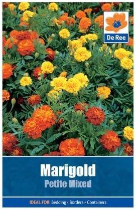 SOOGGI 50粒 マリーゴールドの種 きれいに咲く 植物種子 花 有機 観葉植物 高い発芽率 簡単な栽培 ホームガーデンの装飾