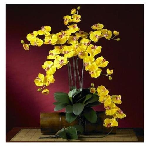 Nearly-Natural-Home-Indoor-Decorative-Tabletop-Fancy-Phalaenopsis-Silk-Orchid-Flower-With-Leaves-6-Stems-Gold