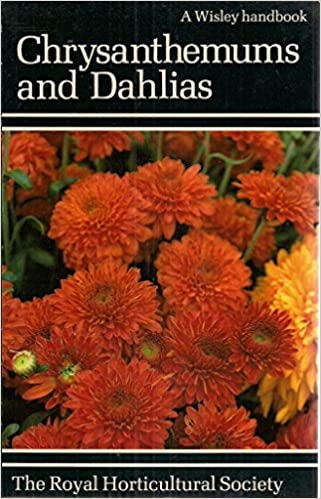 Chrysanthemums and Dahlias (Wisley Handbooks)