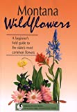Montana Wildflowers, Beverly Magley, 1560441186