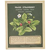 Esschert Design Strawberry Seed Packet
