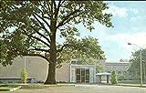 Auditorium Entrance City Art Museum In Forest Park St. Louis, Missouri Original Vintage Postcard