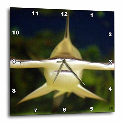shark wall clock - 6