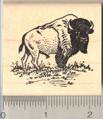 American Bison Rubber Stamp