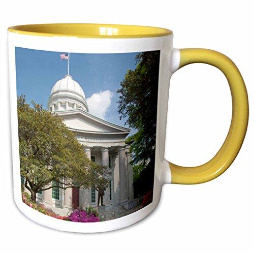 3dRose Danita Delimont - Virginia - Virginia, Norfolk. MacArthur Square - US47 CMI0029 - Cindy Miller Hopkins - 11oz Two-Tone Yellow Mug - Norfolk Macarthur