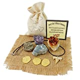 Pirate Treasure Pouch Set 9 Pcs Collection - 3 Gold Pirate Coins, 1 Shark Tooth Necklace, 1 Pyrite Stone, 3 Crystal Clusters: Amethyst, Citrine, Blue Celestine in 1 Canvas Pouch, Beverly Oaks COA