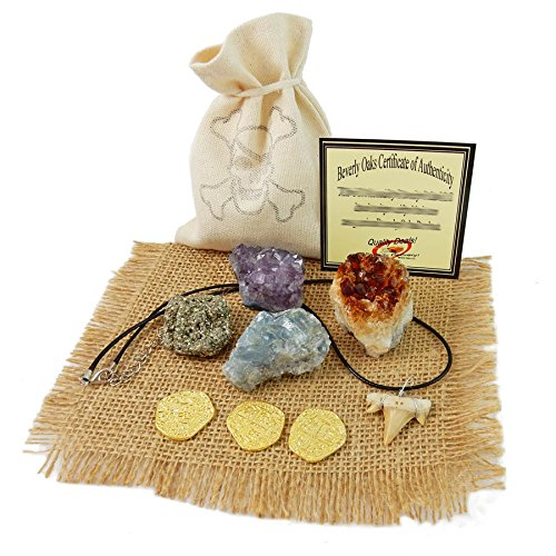 Pirate Treasure Pouch Set 9 Pcs Collection - 3 Gold Pirate Coins, 1 Shark Tooth Necklace, 1 Pyrite Stone, 3 Crystal Clusters: Amethyst, Citrine, Blue Celestine in 1 Canvas Pouch, Beverly Oaks COA (Child Skull Teeth)