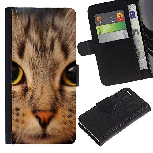 TaiTech / Housse Coque étui Etui en cuir - Kitten American Shorthair Maine Coon - Apple Iphone 4 / 4S