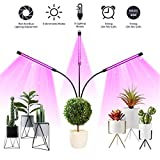 Grow Light, Amconsure 30W LED Grow Lamp Bulbs Plant Lights Full Spectrum, Auto ON & Off with 3/9/12H Timer 5 Dimmable Levels Clip-On Desk Grow Lamp, Triple Head Adjustable Gooseneck for Indoor Plants Review