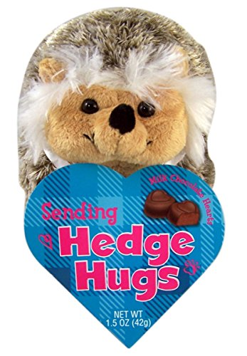 Hedgehog Hugs Animal Valentines Plush Toy with Milk Chocolate Hearts, 7 Inch