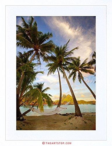 - The Art Stop Photo Beach Landscape Bora Tropical Palm Tree Framed Print F97X2774