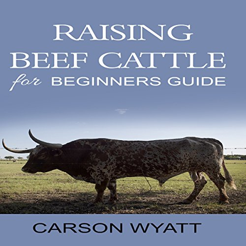Raising Beef Cattle for Beginner's Guide
