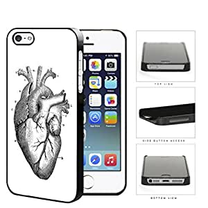 Anatomy Of Heart Diagram Hard Plastic Snap On Cell Phone Case Apple iPhone 5 5s