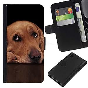 Labrador Retriever Golden Guilty Dog Eyes - la tarjeta de Crédito Slots PU Funda de cuero Monedero caso cubierta de piel Sony Xperia Z1 L39