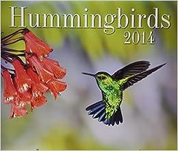 Hummingbirds 2014 Calendar (Calendars)