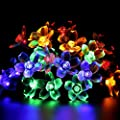 All Star Solar Lights Outdoor String 50 LEDs Flower Bulbs Led Garden Lights Outdoor Multi Color/Warm White