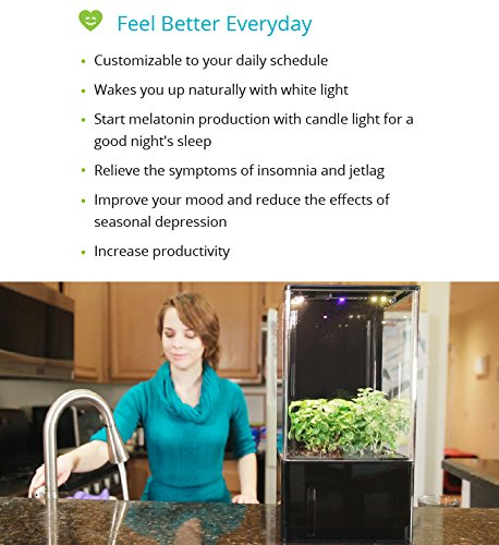 EcoQube Air - Decorative Hydroponics Indoor Herb Home Garden Kit with LED Grow Light, Basil Seeds and True Hepa-Type Filter Air Purifier by EcoQube (Image #5)