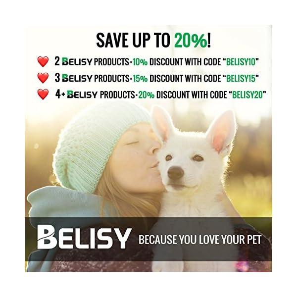 51OMUIrvnbL BELISY Hunde Sicherheitsgurt fürs Auto I maximale Sicherheit & Komfort I Blau