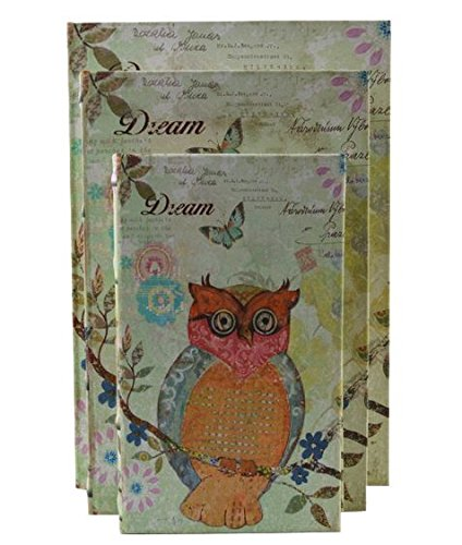 Set of 3 Wood Faux Leather Book Dreaming Owl Decorated Boxes 3 Nesting Leather Boxes