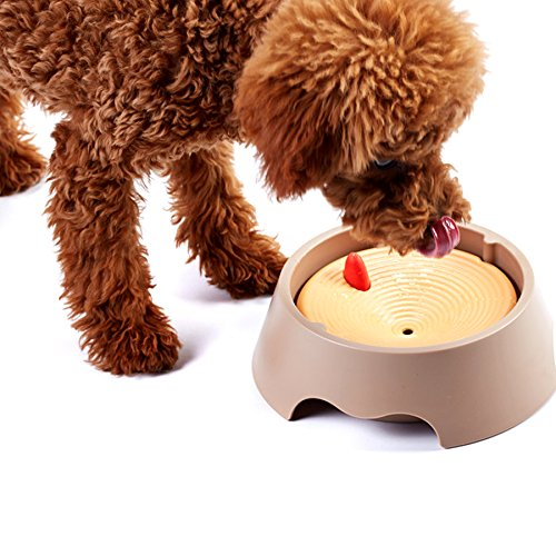 Alfie Pet by Petoga Couture - Ryan Slow-Down Pet Water Bowl (for Dogs & Cats)