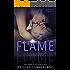 FLAME: (Spark Series Companion Standalone)
