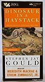 Dinosaur in a Haystack, Stephen Jay Gould, 0787109150