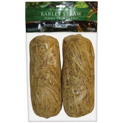 (Summit 130 Clear-water Barley Straw Bales, 2-Pack)