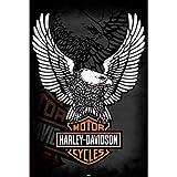 Harley Davidson Eagle Poster Art Print