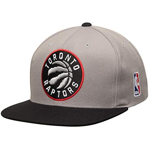 Mitchell & Ness Toronto Raptors STA3 2 Tone XL Logo Snapback Gray Hat Cap NBA ()