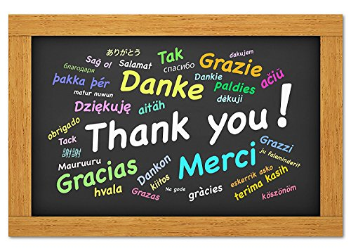 Thank You Cards - Multilingual Thanks - Thanks Around the World - Blank on the Inside - Includes Cards and Envelopes - 5.5