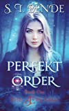 Perfekt Order (The Ære Saga) (Volume 1)