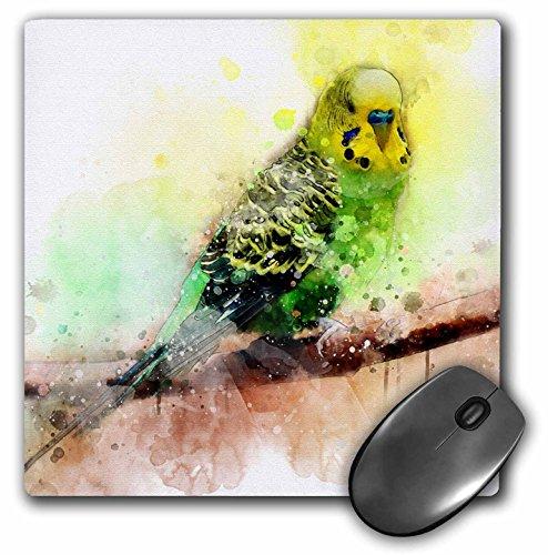 3dRose Sven Herkenrath Animal - Budgie Budgerigar Parakeet with Watercolor Style - MousePad (mp_280365_1)