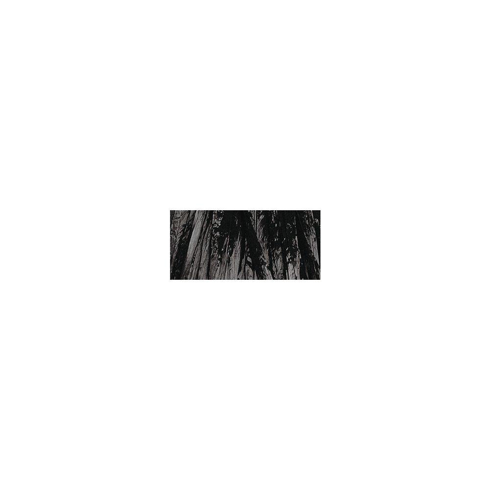 Rayher 5214801/Raphia Brillant 20/m Noir