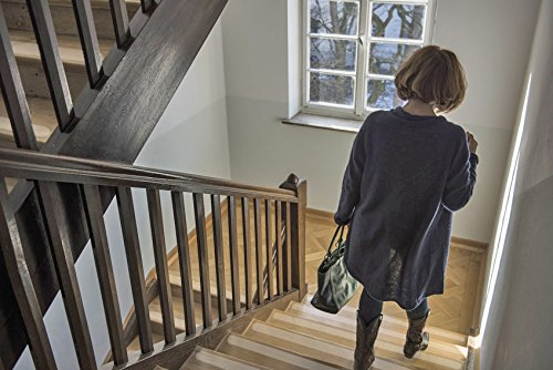 Anstatt Stufenmatten od Treppenteppich als Rutschschutz Kara Grip Pro Anti-Rutsch Streifen Rolle Innentreppen 6 lfm Rolle 3 cm transparent transparent Strumpffreundlich auch fuer Hund und Kind