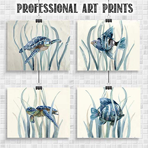 Sea Turtles & Fish Wall Art Set-(4) 10 x 8