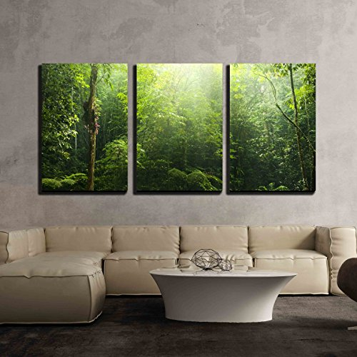 wall26 - 3 Piece Canvas Wall Art - Green Forest with Ray of Light. - Modern Home Decor Stretched and Framed Ready to Hang - 24