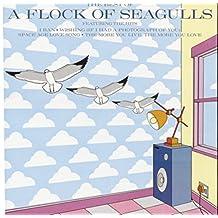 Best of a Flock of Seagulls [Importado]