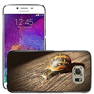 Hot Style Cell Phone PC Hard Case Cover // M00110961 Snail Wood Slow Animal // Samsung Galaxy S6 (Not Fits S6 EDGE)