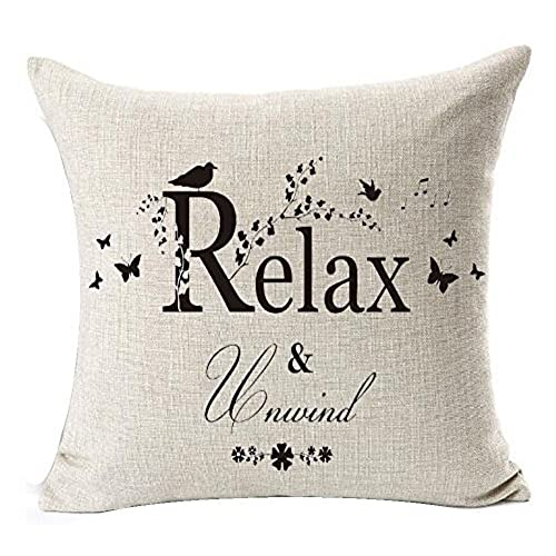 Relax Pillows For Home Decor Amazon Classy Relax Decorative Pillow