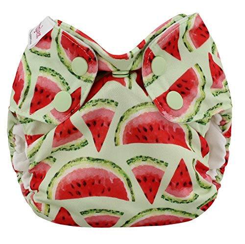 Blueberry Newborn Simplex All in One Cloth Diapers, Made in USA (Watermelon)