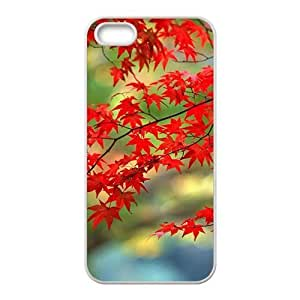 Autumn maple tree scenery Phone Case for iPhone 5S(TPU)